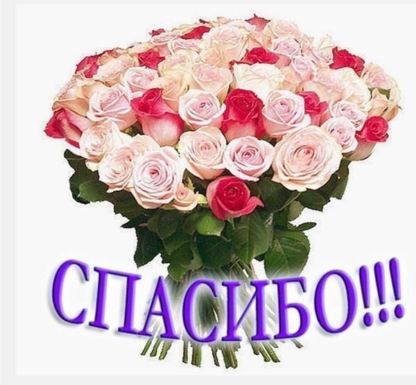 http://tobolskdobersob.ucoz.ru/_fr/0/3760630.jpg